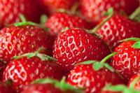 Фрукты и ягоды 40 фото