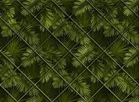 Тропики и растения 40фото